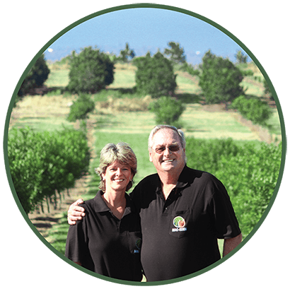 macadamia processors South Africa - Mac-Eden Estate